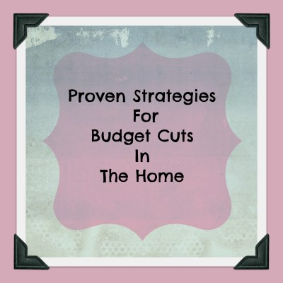 Proven Strategies for Budget Cuts In The Home: How To Reduce Energy Bills And Get Tax Credits