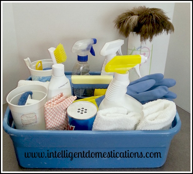 Cleaning tray with cleaning products
