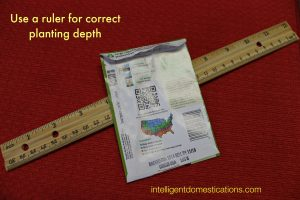 Use a ruler for correct planting depth by intelligentdomestications.com