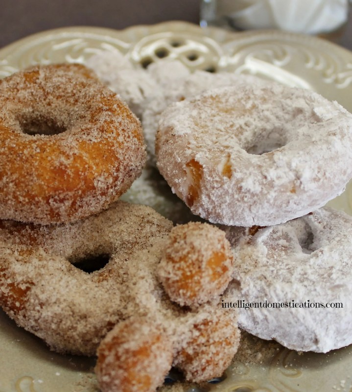 Biscuit Doughnuts are a yummy homemade treat with only a few ingredients. We don't make them often but when we do they disappear quickly.