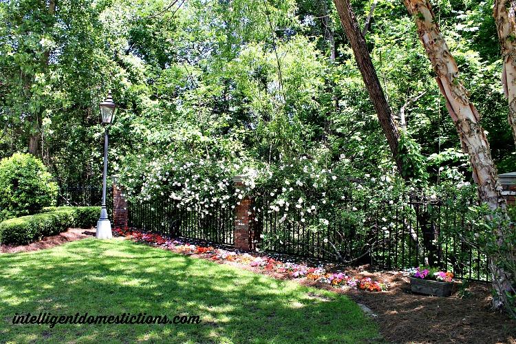 Secret Southern Garden Stroll Macon Ga.