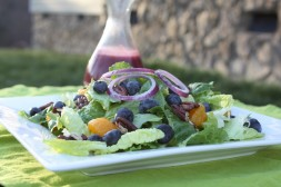 Ga. Blueberry and Mandarin Orange Salad with Toasted Pecans