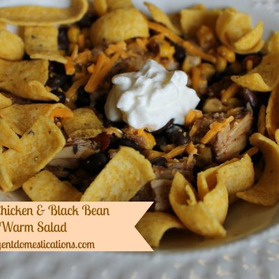 Summer Salad Series: Grilled Chicken & Black Bean Warm Salad
