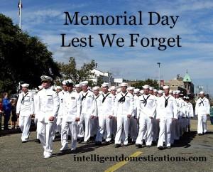 Navy marching in Veteran's Day Parade in Biloxi, Ms. 2010.intelligentdomestications.com