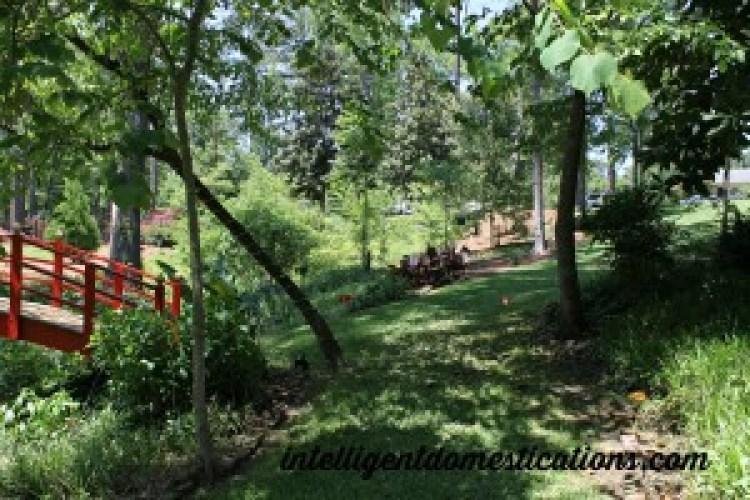 Path next to Oriental foot bridge.intelligentdomestications.com