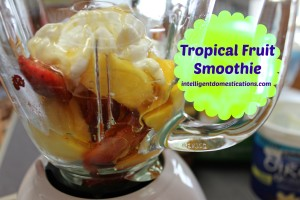 Tropical Fruit Smoothie. Place the ingredients in the blender. intelligentdomestications.com