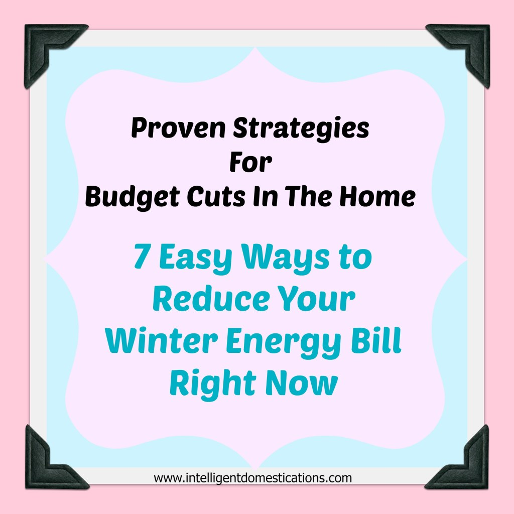 7 Easy Ways To Reduce Your Winter Energy Bill Right Now can be found at www.intelligentdomestications
