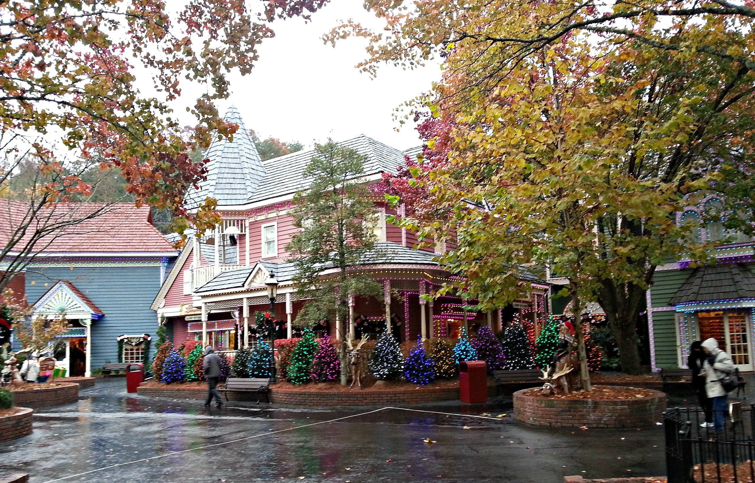 Christmas at Dollywood   Intelligent Domestications
