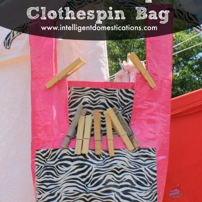 DIY Duct Tape Clothespin Bag