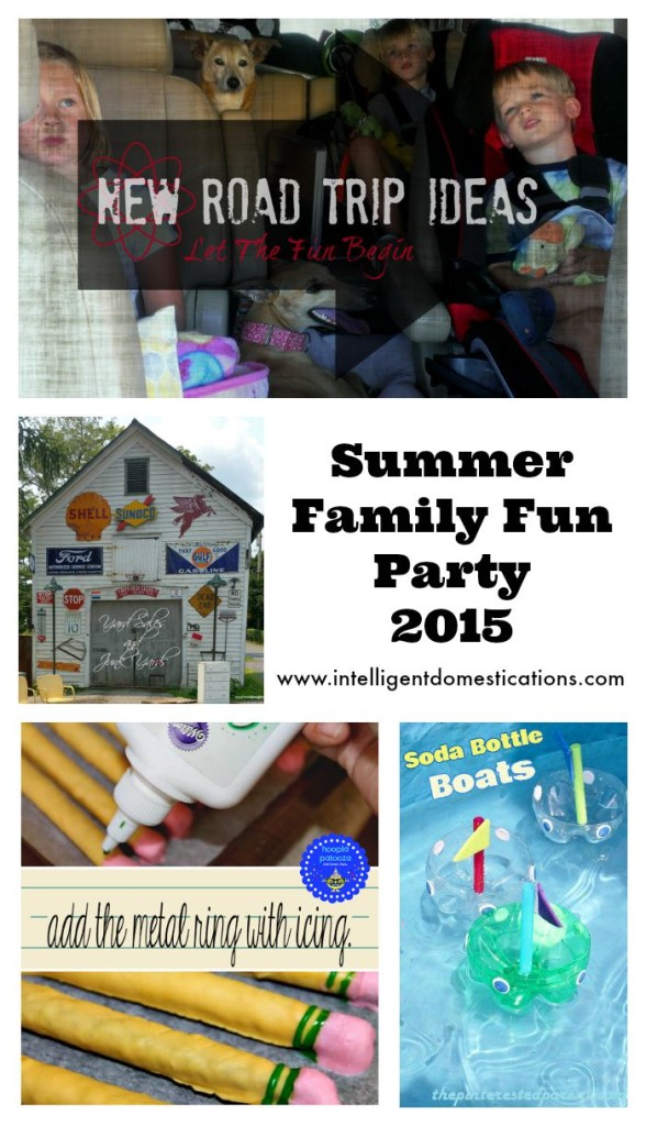 Summer Family Fun Party 2015 Features 2.www.intelligentdomestications.com
