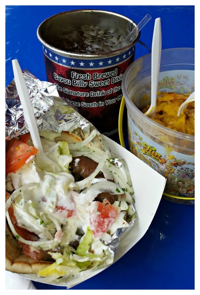 Ga. National Fair Food 5 2015