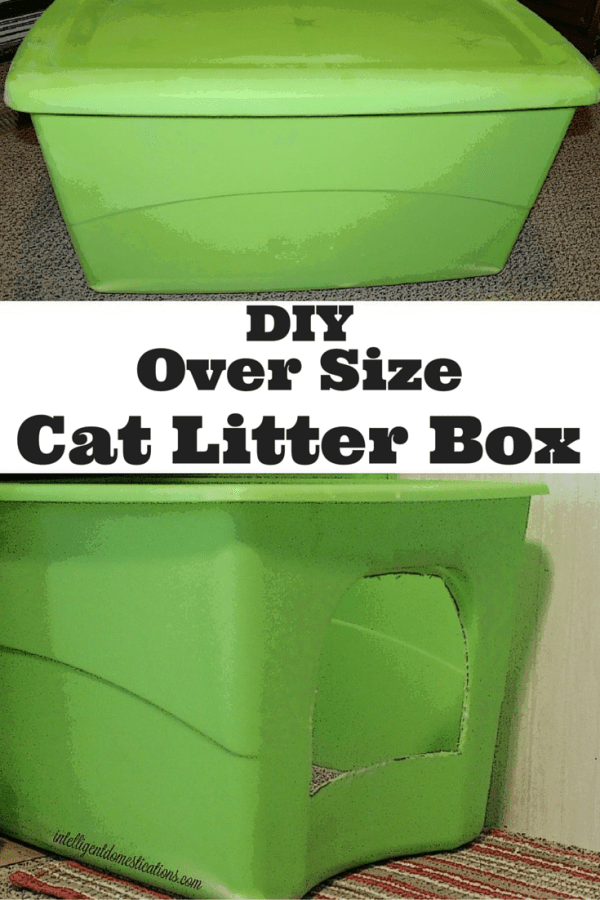 How to make an oversize cat litter box for your big cat. DIY Big Cat Litter Box
