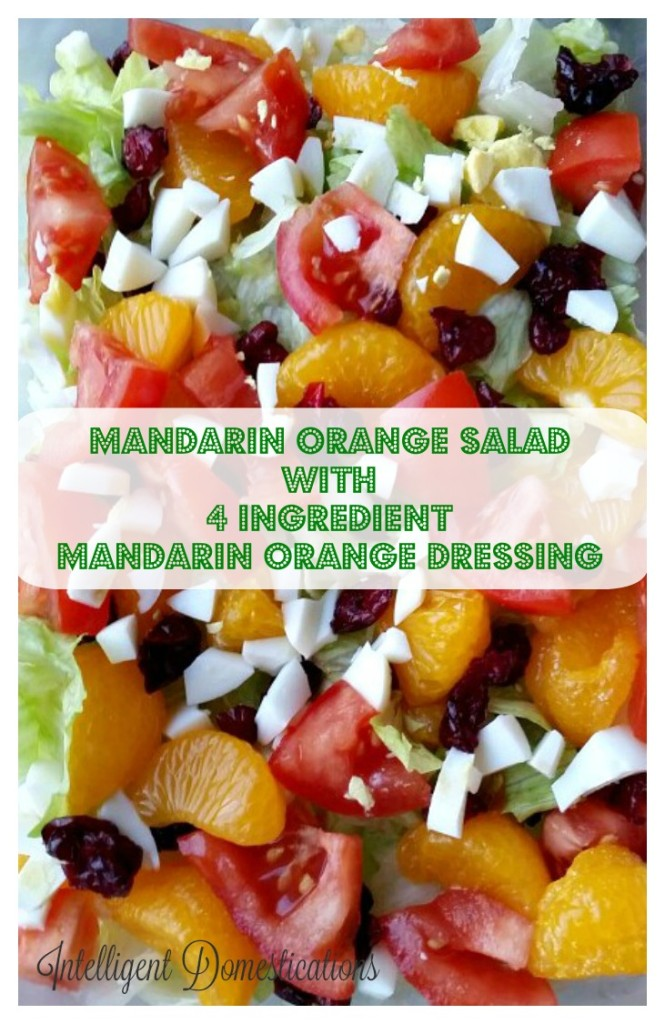 Mandarin Orange Salad with 4 Ingredient Mandarin Orange Dressing recipe at intelligentdomestications.com