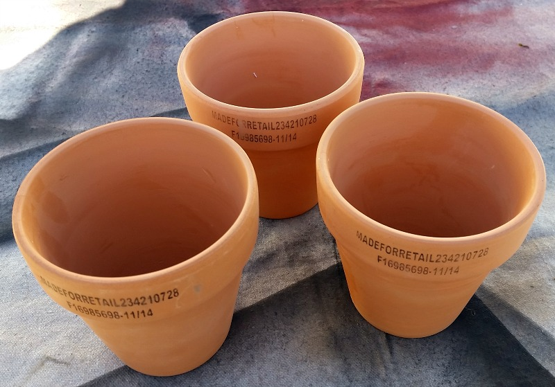Thrift store clay pots