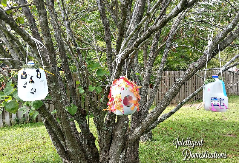thre-milk-jug-bird-houses-crafted-by-the-grandchildren-and-hanging-in-a-tree-all-you-need-is-paint-a-few-crafty-items-and-glue-for-this-projec