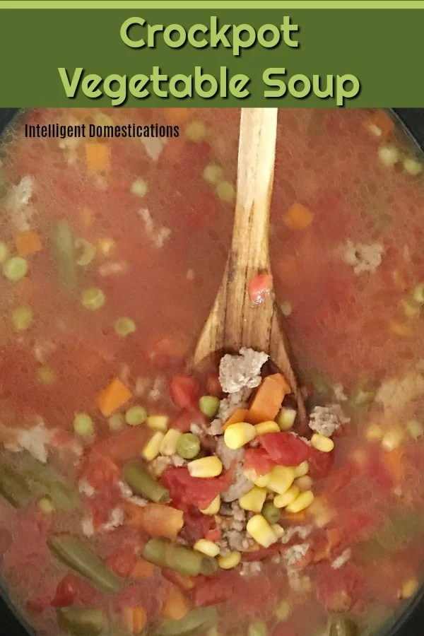Crockpot Vegetable Soup made from scratch