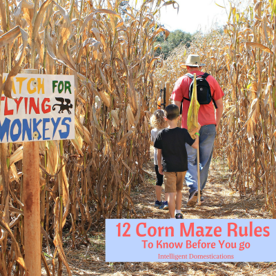 12 Things To Know Before Visiting A Corn Maze Plus Our Big Georgia List