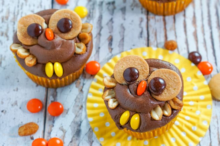 Peanut Butter Chocolate Owl Cupcakes