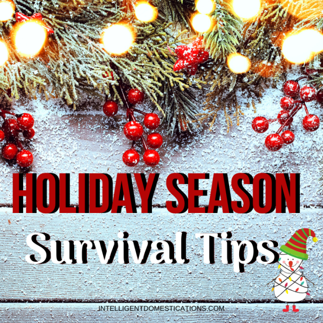 Holiday Season Survival Tips that work for my family. How I survive Thanksgiving and Christmas with less stress.