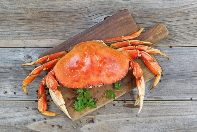 	Avoid raw and undercooked crab meat