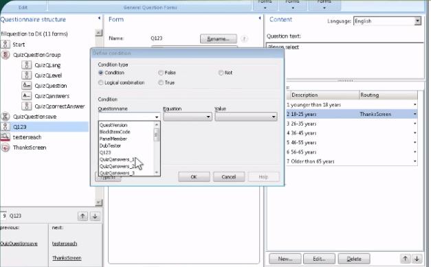 Dub InterViewer Data Collection Tool Screen Shot