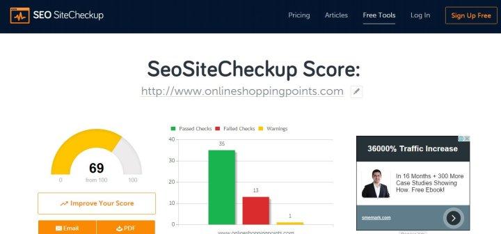 SEO Site Checkup print screen