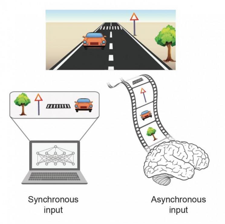 Um novo tipo de IA foi criado inspirado no cérebro humano
