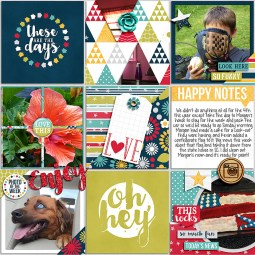 Pocket LIfe '15: July Collection by Traci Reed