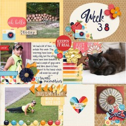 Pocket Life '15 - September Collection by Traci Reed