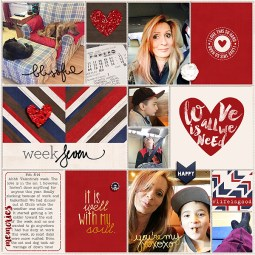 Pocket Life '15: February Collection by Traci Reed 365Unscripted: Plastic Stitched Grids Bundle by Traci Reed Weekly Edition (brushes) by One Little Bird