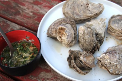 Attacking Oysters © Andor (3)