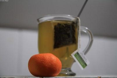 First Satsuma Mandarin of 2013 © Andor (1)