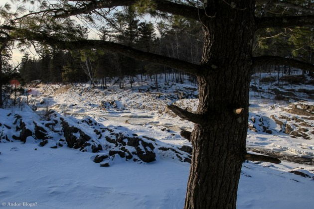 Jay Cooke © Andor (5)