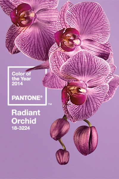 Radiant Orchid in our interiors