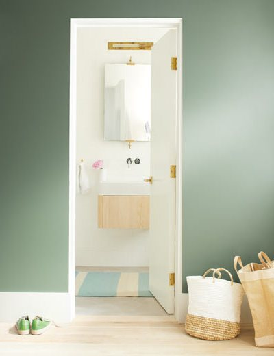 Benjamin Moore, Hallway, Bathroom, Cushing Green, White Heron