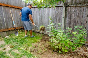 Working on friends' backyards