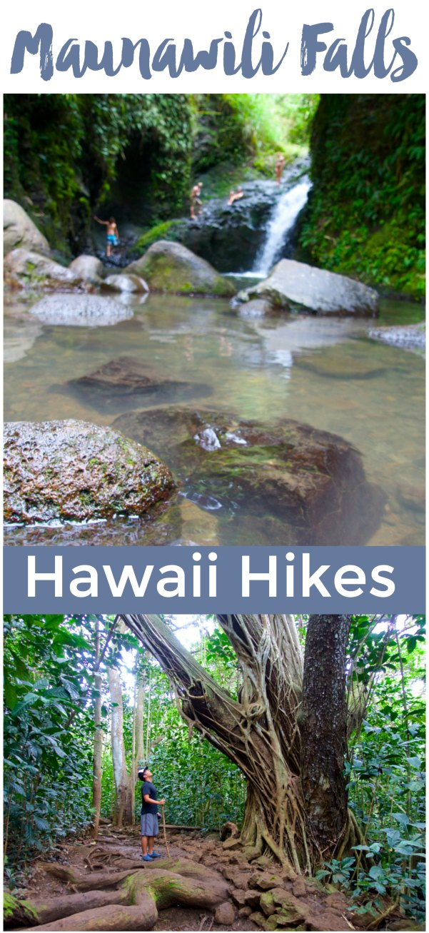 Photos and tips for hiking Maunawili Falls on Oahu | Hawaii Hikes | Intentional Travelers