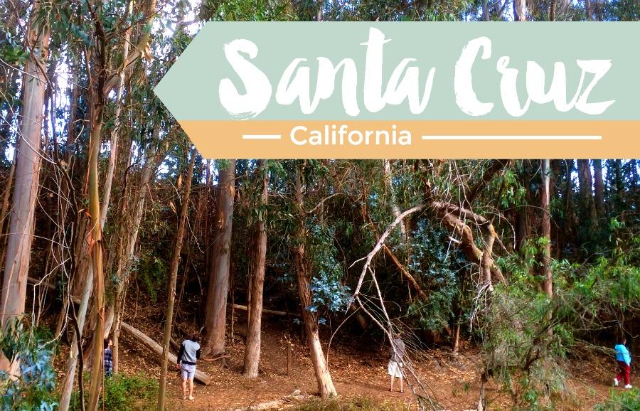 Things to Do Outdoors in Santa Cruz, California