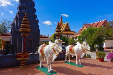 Angkor-Wat-Half-Marathon - 3