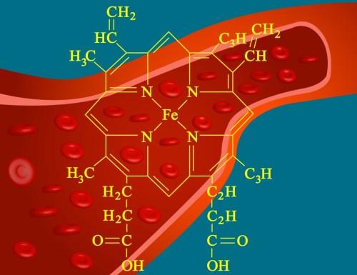 small resolution of heme structure of hemoglobin