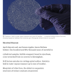 guardian poem of the week - microbial museum