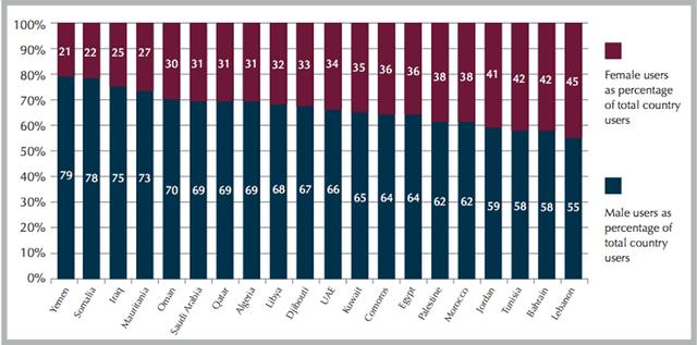 facebook gender breakdown in the MENA