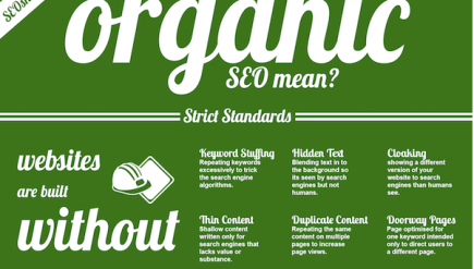 Organic vs Manufactured SEO in the Middle East