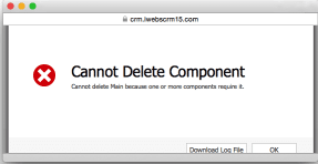 CRM Cannot Delete Component