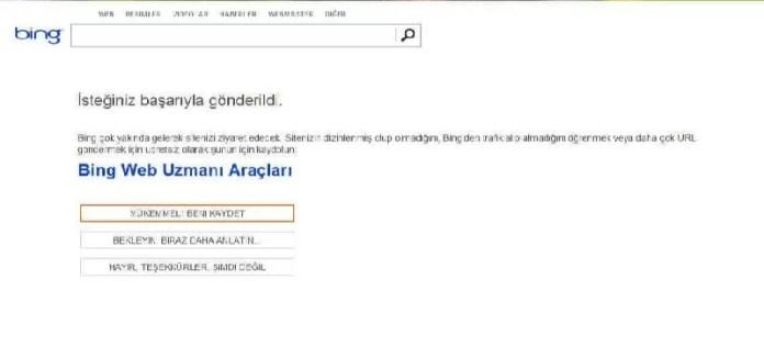 Bing arama motoruna site gönder