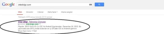 Google Snippet Nedir