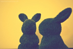 Grass-rabbits