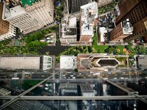 a greener street grid