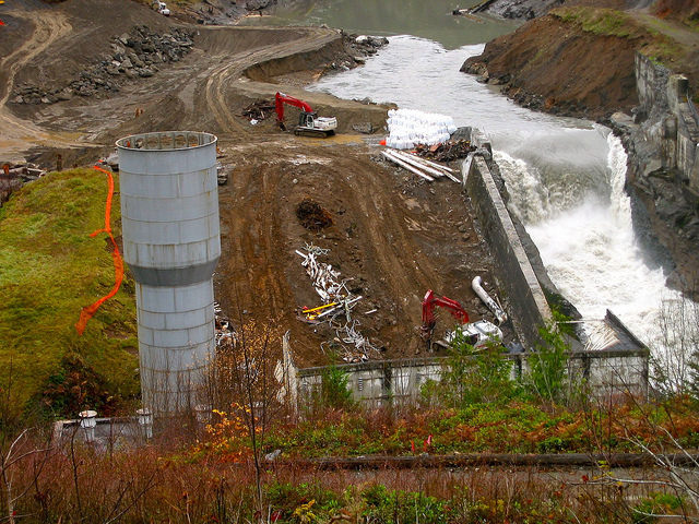 Dismantling the Elwha River Dam