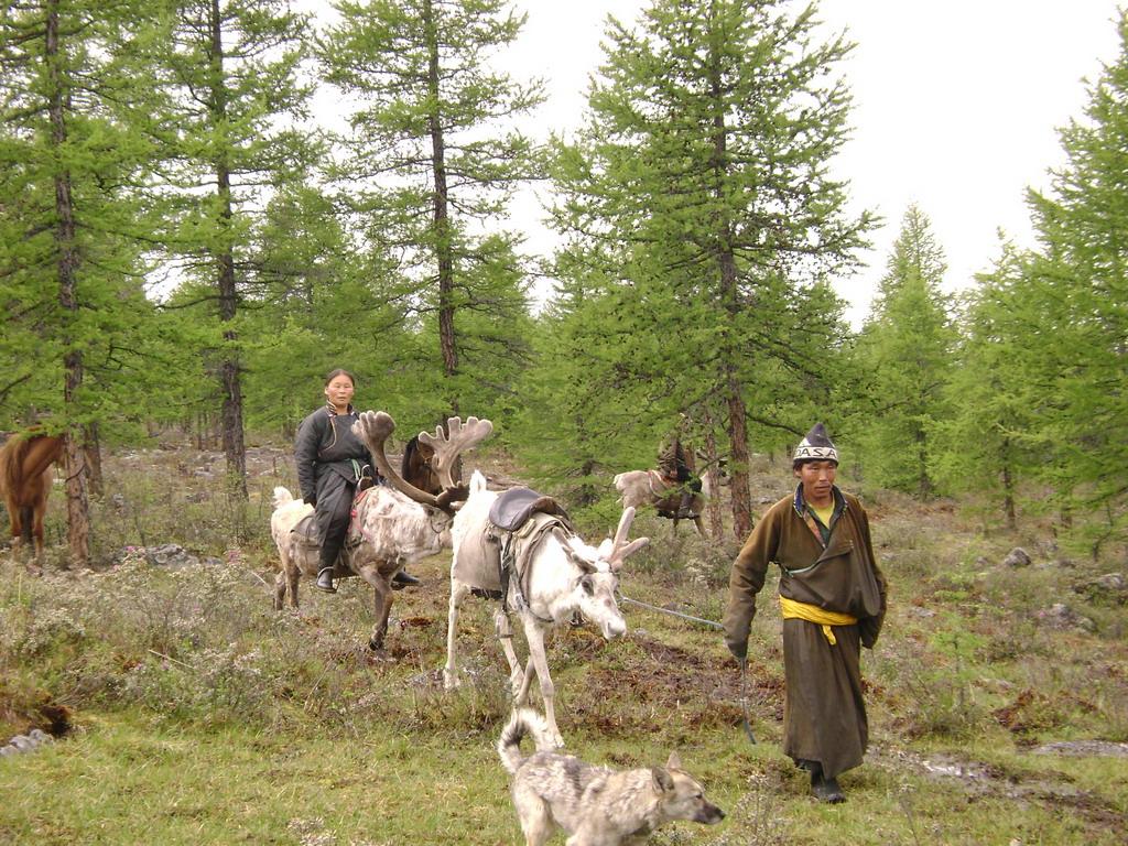 dukha nomads